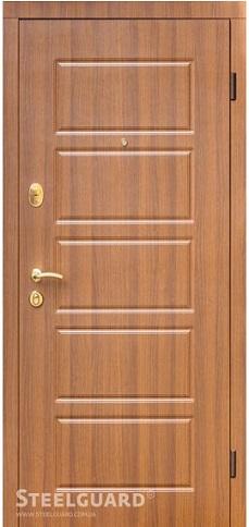Входные двери Steelguard DG-21